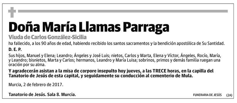 María Llamas Parraga