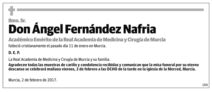 Ángel Fernández Nafria