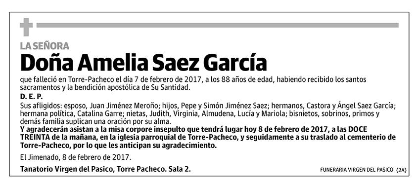 Amelia Saez García