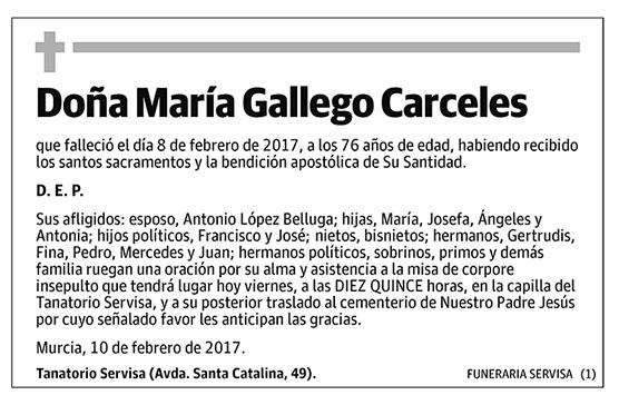 María Gallego Carceles