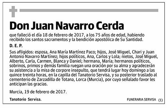 Juan Navarro Cerda
