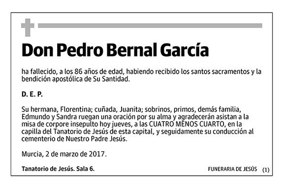 Pedro Bernal García