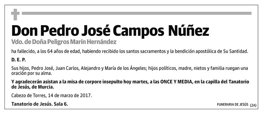 Pedro José Campos Núñez