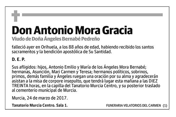 Antonio Mora Gracia