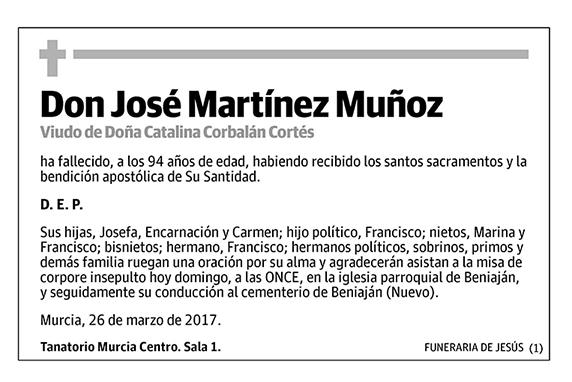 José Martínez Muñoz