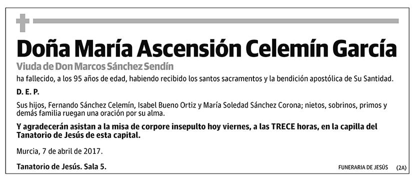 María Ascensión Celemín García