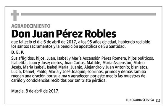 Juan Pérez Robles