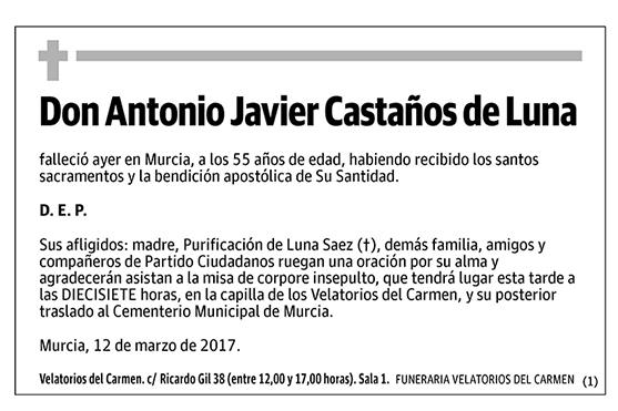 Antonio Javier Castaños de Luna