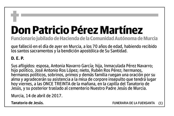Patricio Pérez Martínez