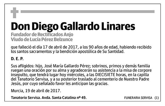 Diego Gallardo Linares
