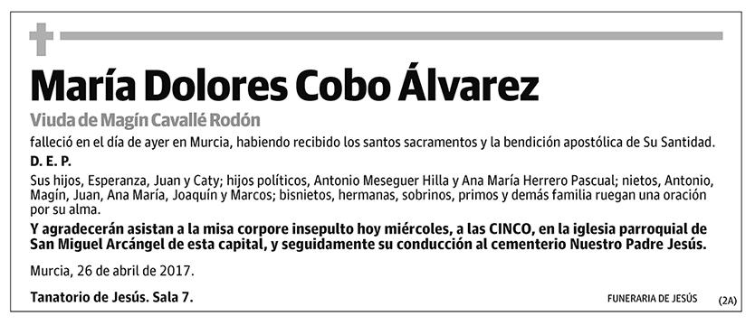 María Dolores Cobo Álvarez