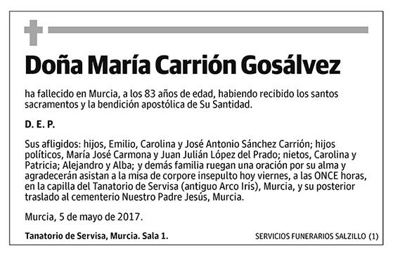 María Carrión Gosálvez