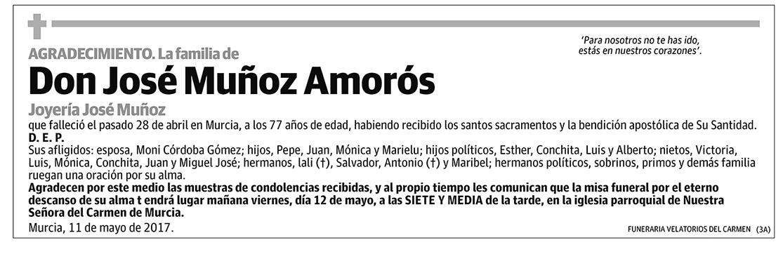 José Muñoz Amorós