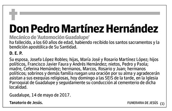 Pedro Martínez Hernández
