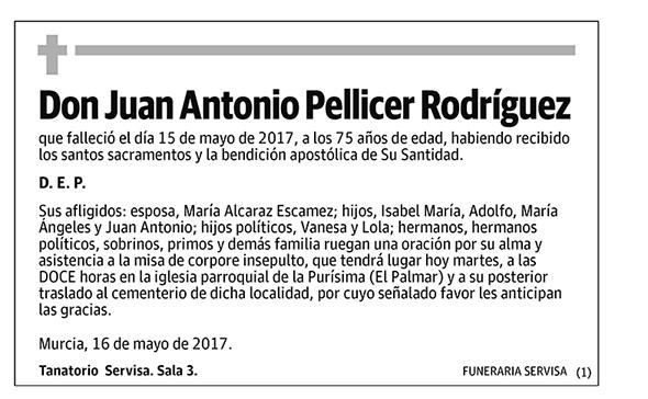 Juan Antonio Pellicer Rodríguez