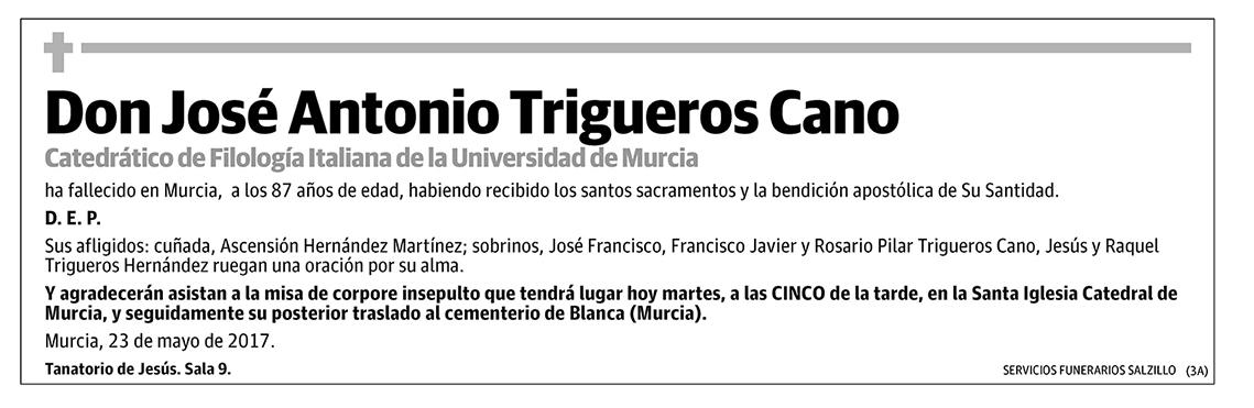 José Antonio Trigueros Cano