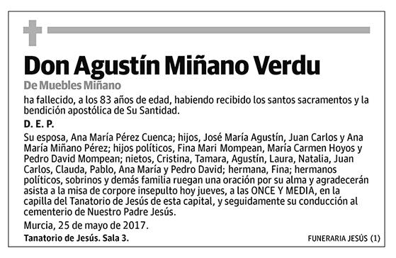 Agustín Miñáno Verdu