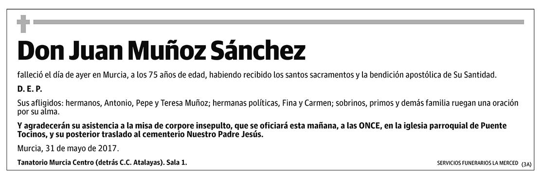 Juan Muñoz Sánchez