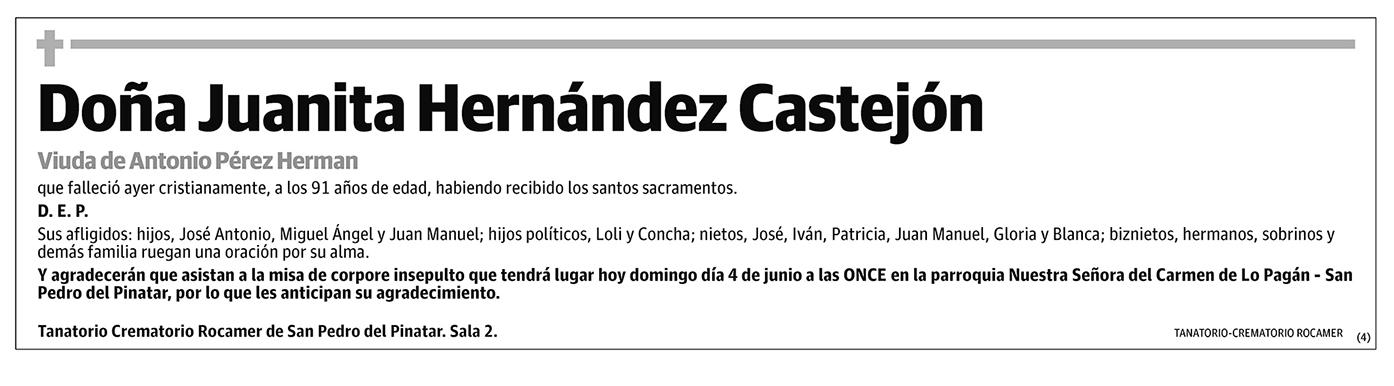 Juanita Hernández Castejón