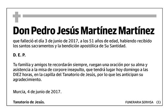 Pedro Jesús Martínez Martínez