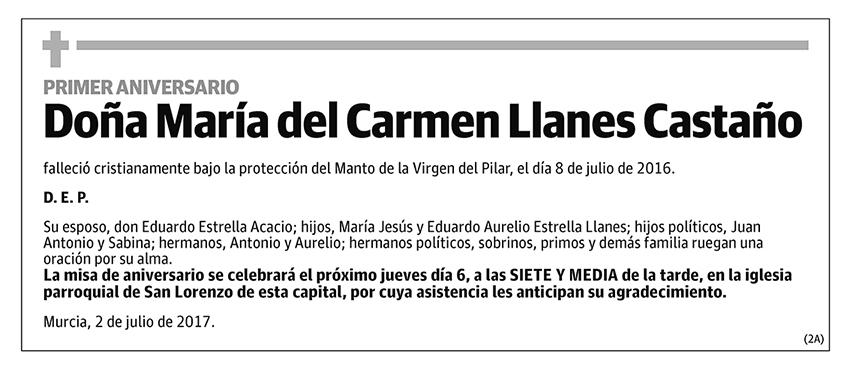 María del Carmen Llanes Castaño