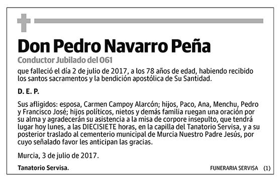 Pedro Navarro Peña