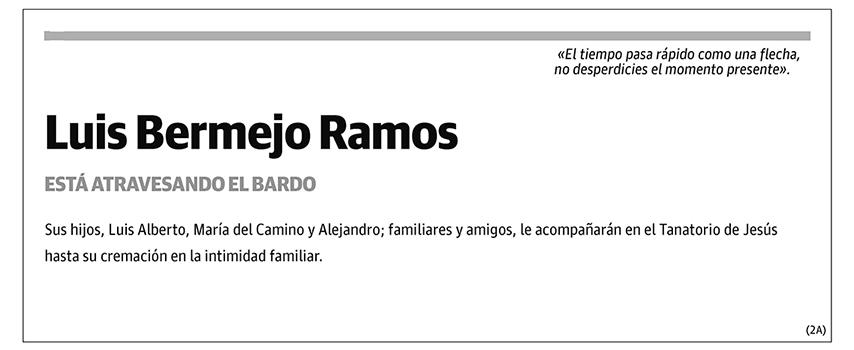 Luis Bermejo Ramos