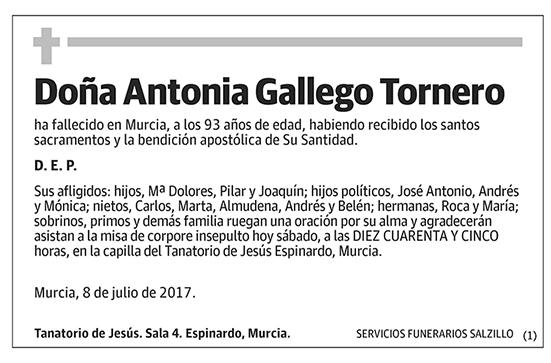 Antonia Gallego Tornero