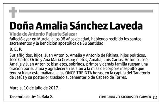 Amalia Sánchez Laveda