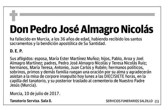 Pedro José Almagro Nicolás