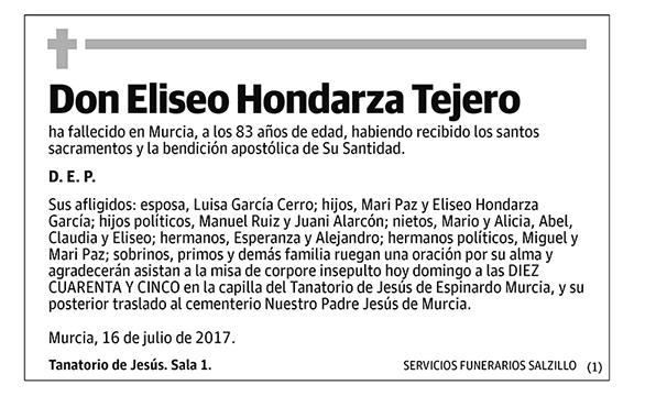 Eliseo Hondarza Tejero