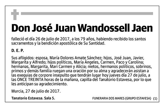 José Juan Wandossell Jaen