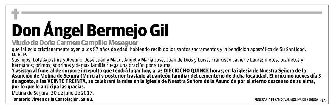 Ángel Bermejo Gil