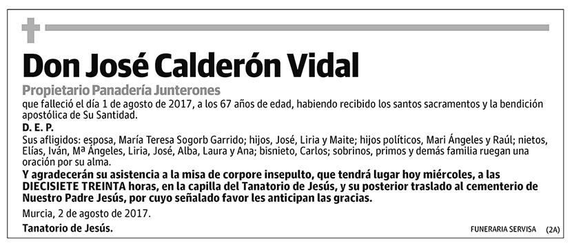 José Calderón Vidal