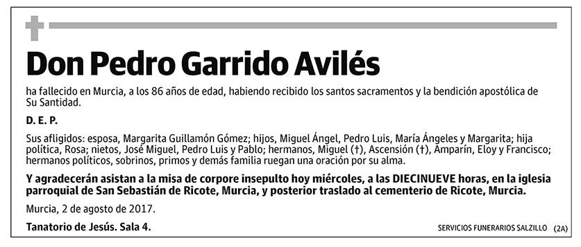 Pedro Garrido Avilés