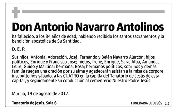 Antonio Navarro Antolinos