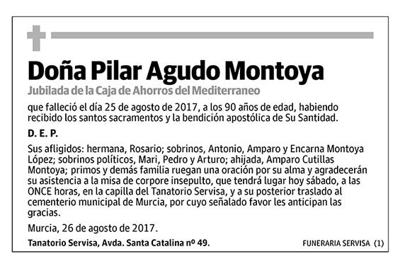 Pilar Agudo Montoya