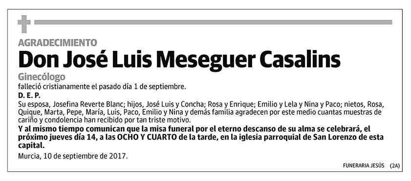 José Luis Meseguer Casalins