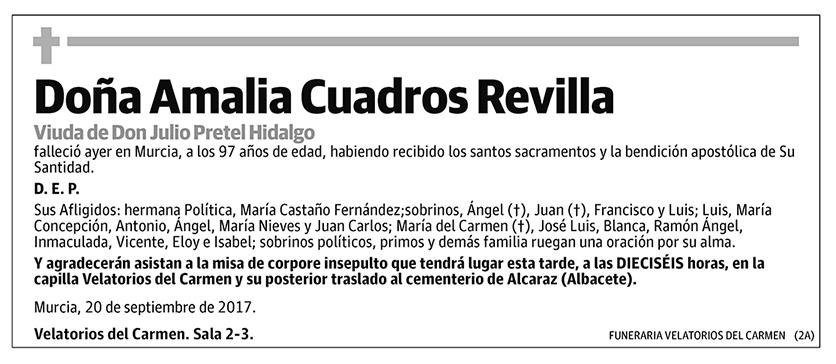 Amalia Cuadros Revilla
