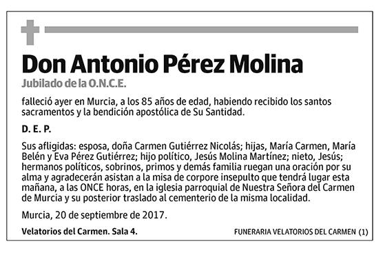 Antonia Pérez Molina