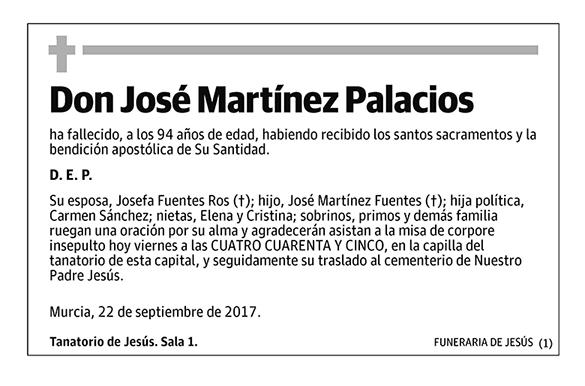 José Martínez Palacios