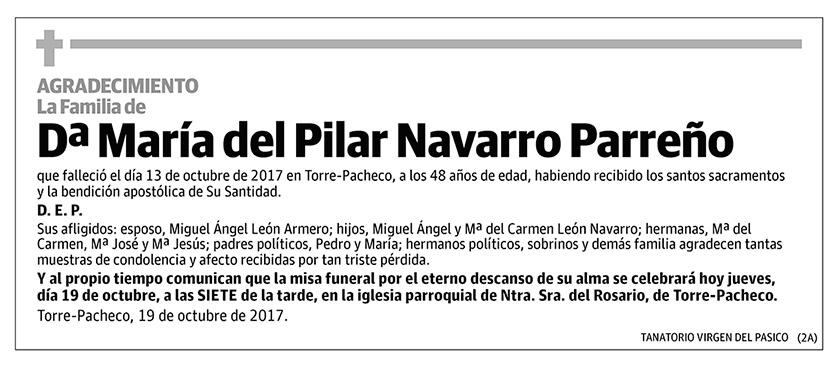 María del Pilar Navarro Parreño