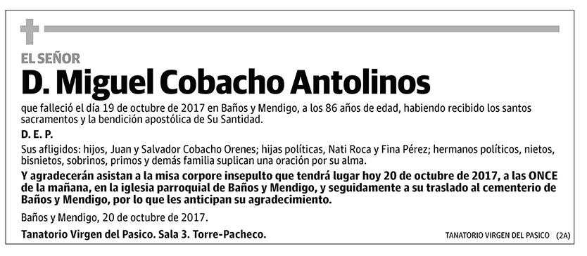 Miguel Cobacho Antolinos