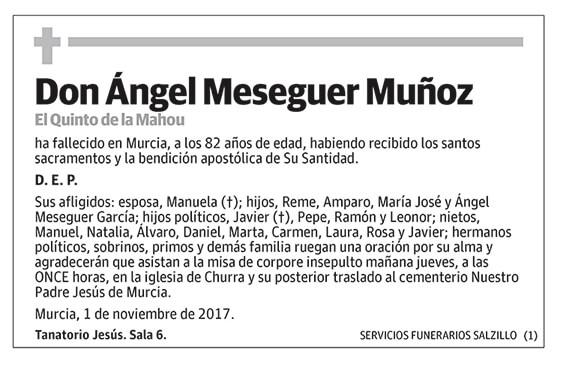 Ángel Meseguer Muñoz