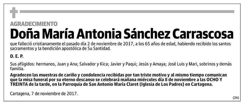María Antonia Sánchez Carrascosa