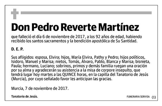 Pedro Reverte Martínez