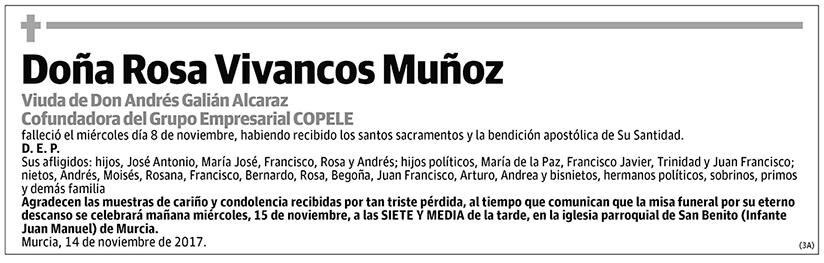 Rosa Vivancos Muñoz