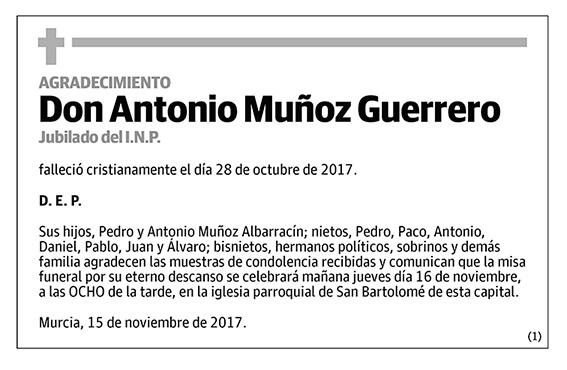 Antonio Muñoz Guerrero