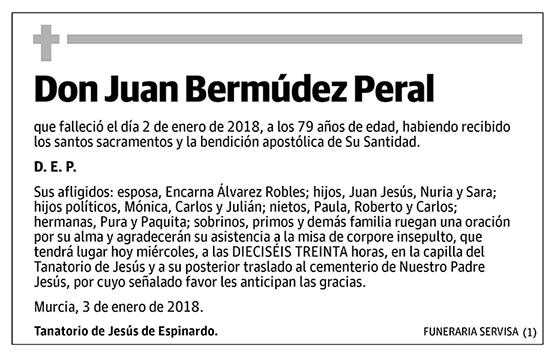 Juan Bermúdez Peral