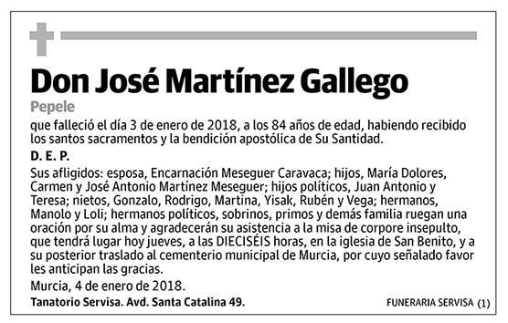 José Martínez Gallego